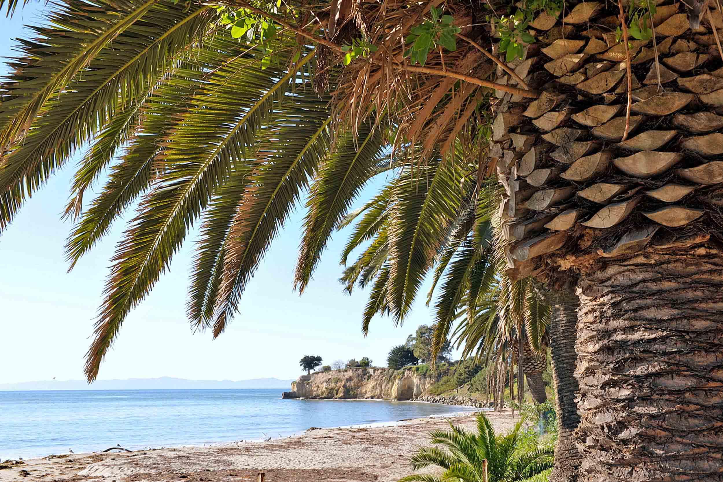 Santa Barbara Hotels >> Santa Barbara Beaches | East Beach, Butterfly Beach, Shoreline