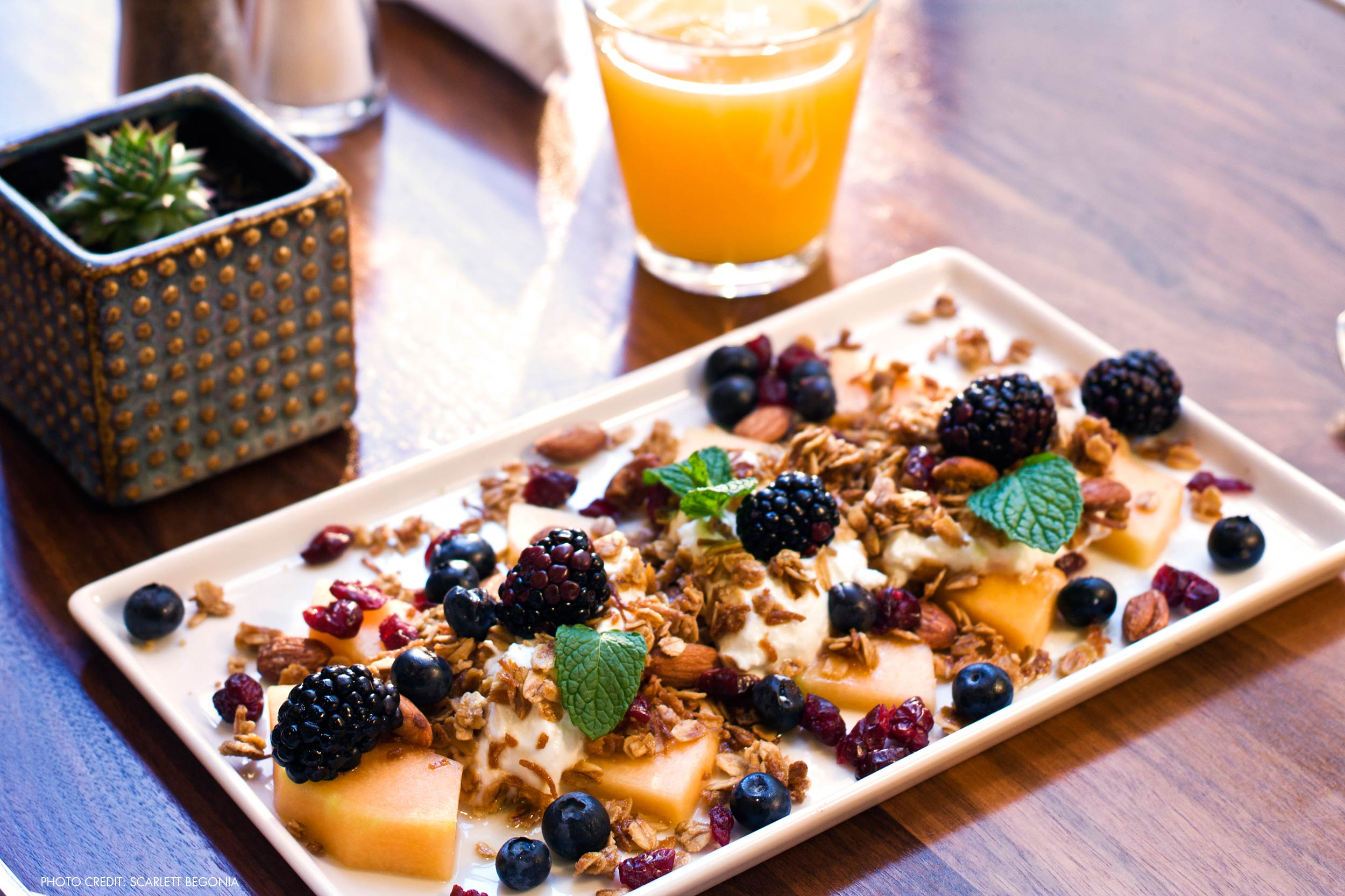 best dating surfers paradise breakfast places to eat